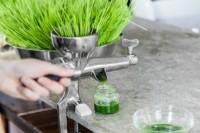 Eliksir života – ukusni sokovi koji pospešuju vaše zdravlje